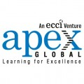 ForPressRelease.com - APEX Global Introduces its Big Data Foundation Course