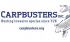 ForPressRelease.com - Carpbusters Launches