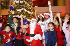ForPressRelease.com - Countdown to Festive Season Begins at Royal Central Hotel The Palm