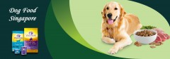 ForPressRelease.com - Doggy Friend Introduces Wellness Pet Food to Their Online Pet Shop